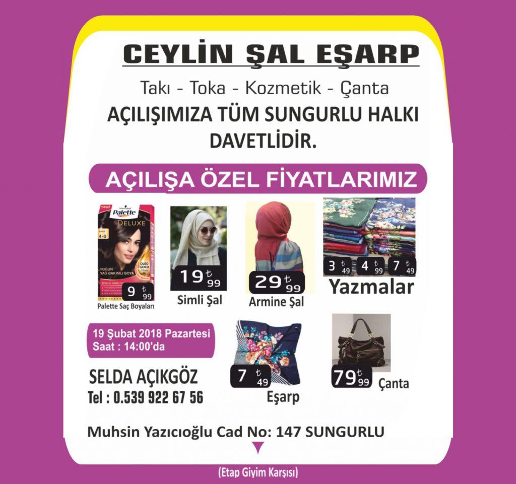 Sungurlu Belediye Voleybol Takımının haftalar öncesi garantilediği ve 1. Lige yükselme play off maçları Elazığ'da oynanacak. Karşılaşmaları Sungurlu TV Canlı Yayınlayacak. | Sungurlu Haber