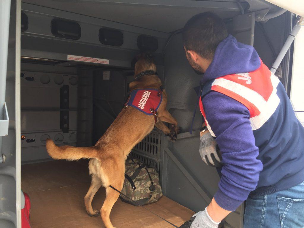 Jandarmadan Köpekli Yol Denetimi » arama, denetim, hisar, jandarma, kıyı, köpek