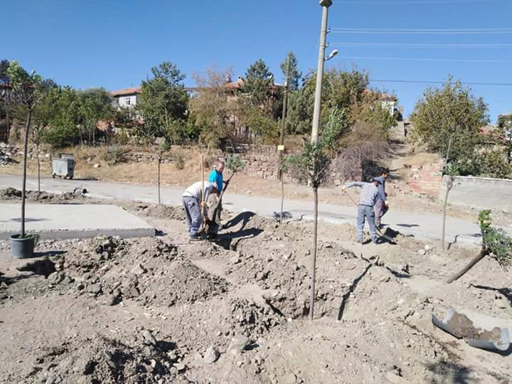 Sungurlu Belediye Başkanlığı tarafından ilçede bulunan parklarda başlatılan tamirat ve fidan dikimi çalışmaları aralıksız devam ediyor.   Sungurlu Haber