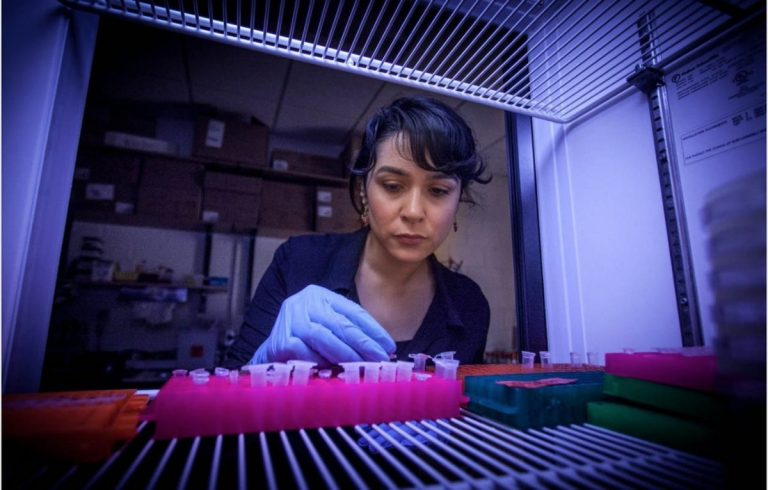 Gururumuz Türk Bilim Kadınları | Sungurlu Haber