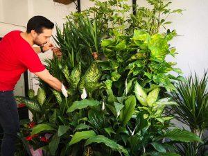 Sunguroğlu Mahallesi Prof Dr. Necmettin Erbakan Caddesi No: 36'da hizmete giren Ufuk Çiçekçilik sahibi Ufuk Buşkut çiçek sektöründe ilçeye hizmet vereceklerini söyledi. | Sungurlu Haber