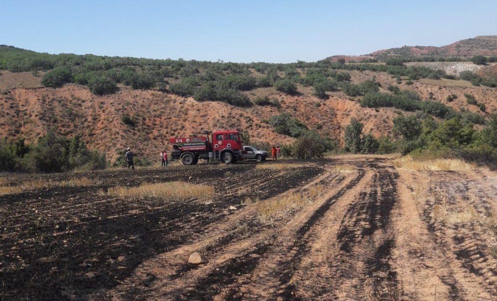 İnegazili köyünde yakılan anızın ormanlık alana sıçraması sonucu 2 dönümlük alan zarar gördü. Yangında bine yakın ağaç kül oldu. | Sungurlu Haber