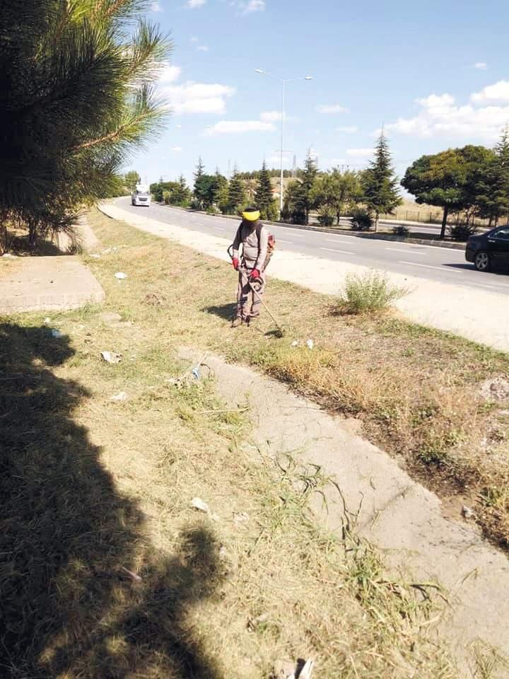 Sungurlu Belediyesi ilçemizin muhtelif yerlerinde ot biçme çalışmalarına aralıksız devam ediyor. | Sungurlu Haber